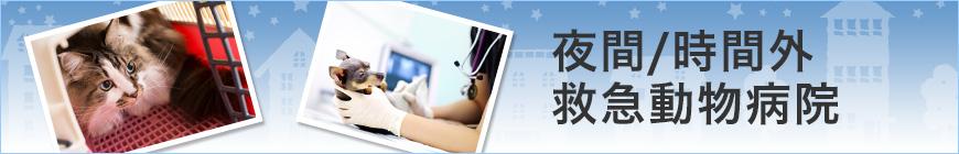 夜間診療、救急診療、時間外診療対応動物病院