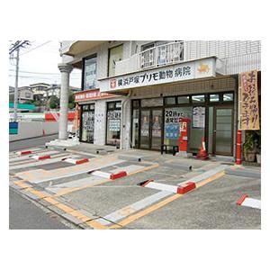 nishishiba-ah.com - 横浜市金沢区の動物病院です。